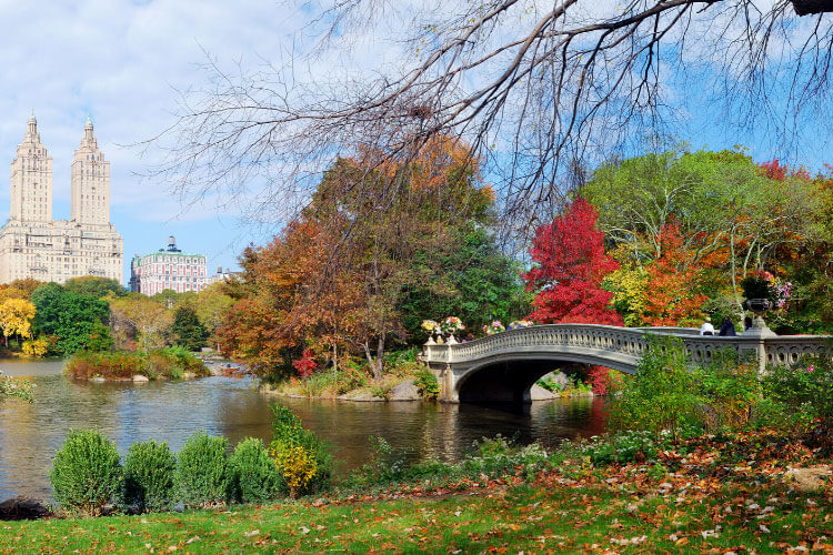 The cast iron Bow Bridge crosses over the lake in NYC's Central Park