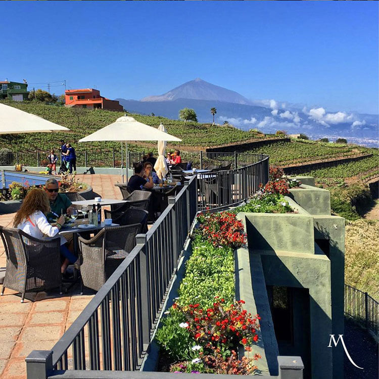Several visitors sit at the tables on the terrace restaurant at Bodegas Monje with the terraced vineyard behind and below and Mount Teide visbile in the distance