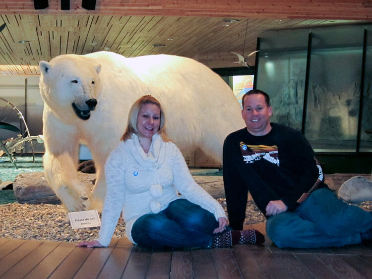Jennifer and Tim sit in front of a polar bear in the Svalbard Museum in Longyearbyen