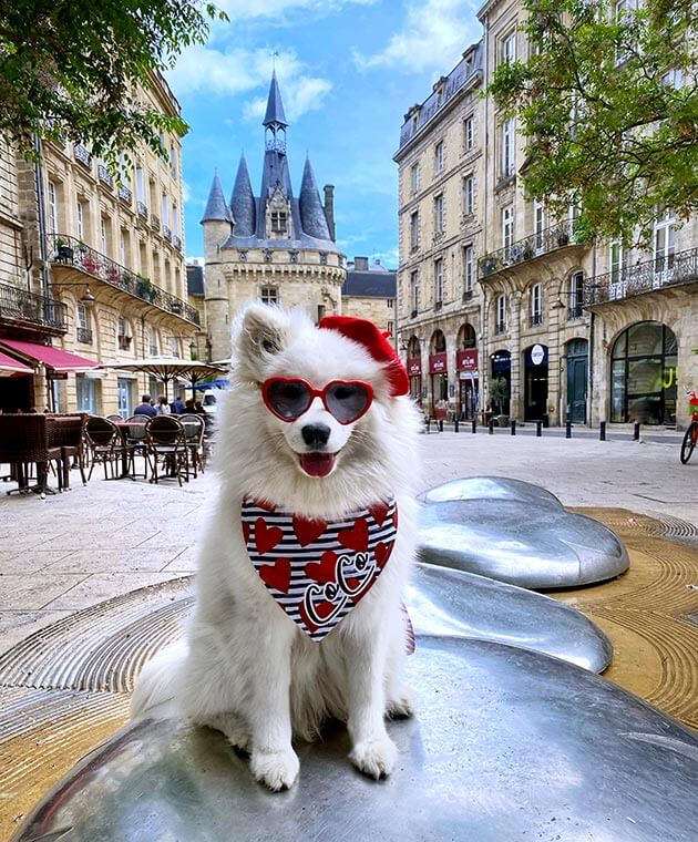 Coco sits on a silver sculpture with the Bordeaux Porte Cailhau behind. Coco is wearing a black and white striped bandana with her name on it and a red beret.